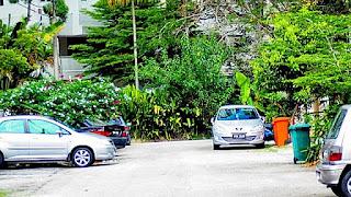 OM S Zuiko Auto-Zoom 35-70mm F4, Sample image 04