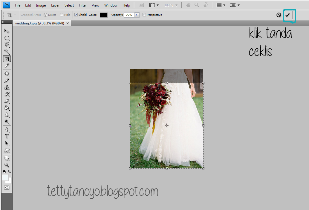 mengcrop image di photoshop cs4