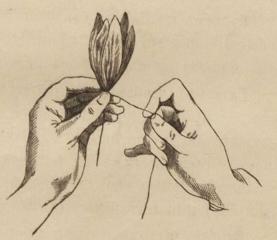 Как закрепить лепестки цветка