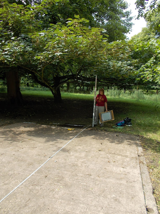 30 July 2014, Hickleton Hall POW Project Day 8