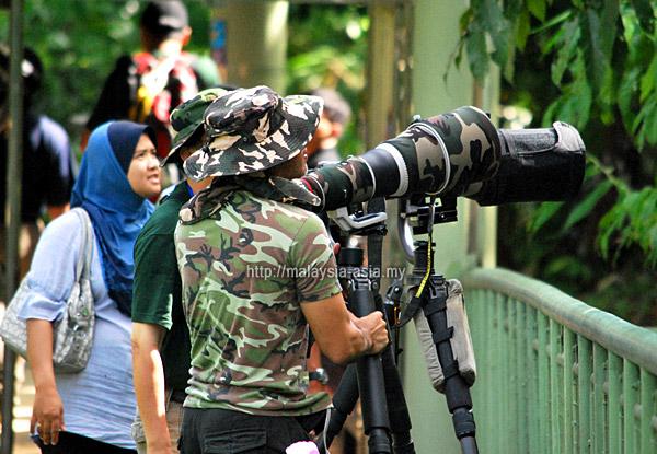 Sabah Birdwatching