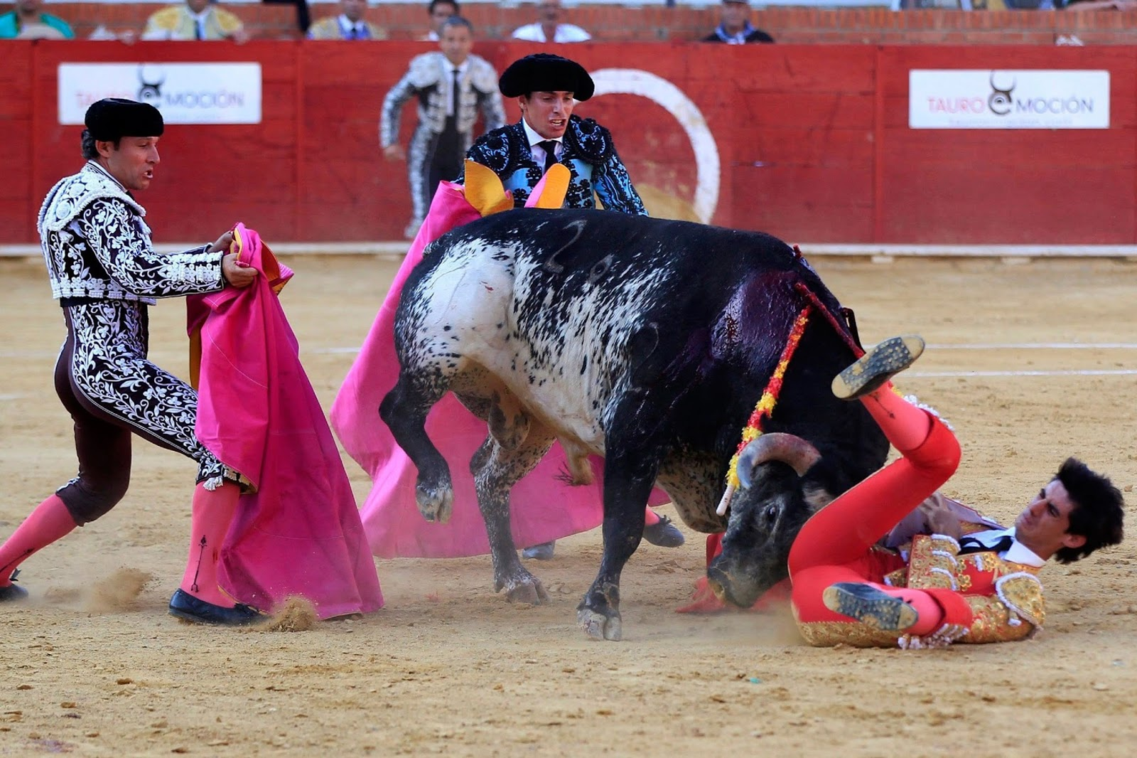 VICTOR BARRIO, MATADOR KILLED