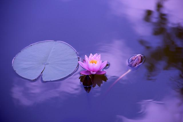 medytacja jak zacząć | jak zacząć medytować