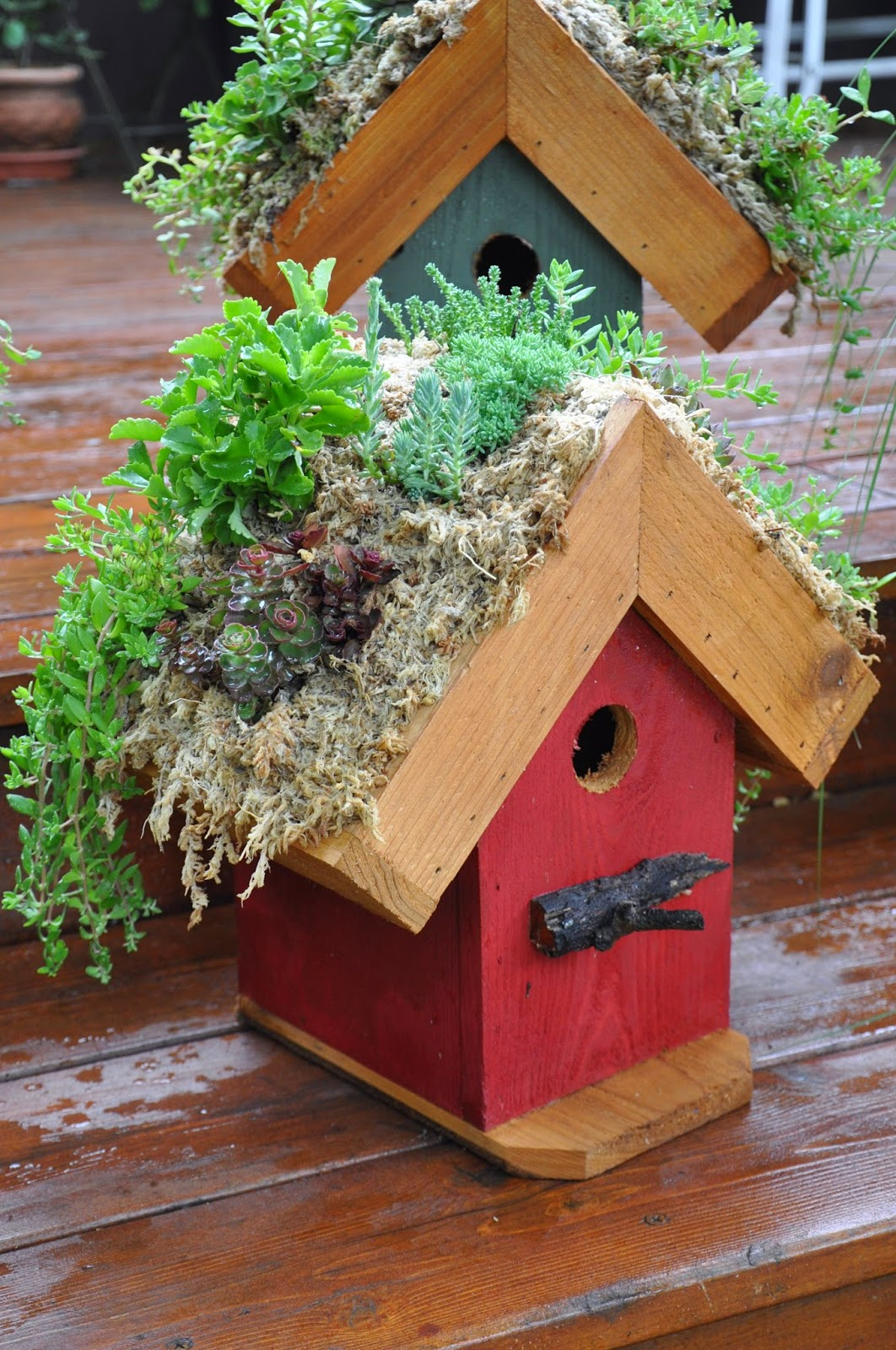 Birdhouse Roof