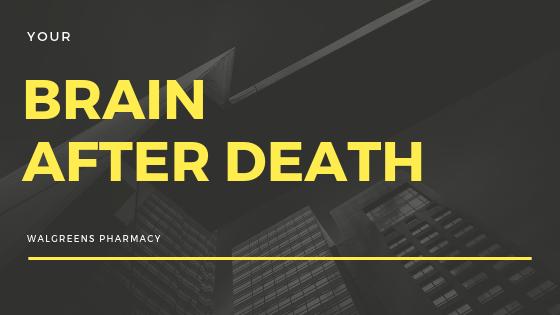 Brain Still Works After Death