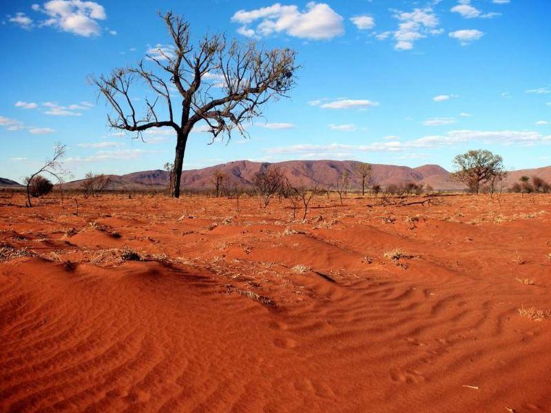 Desert Biomes In The World