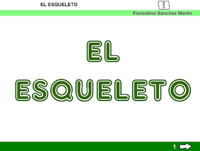 http://cplosangeles.juntaextremadura.net/web/tercer_curso/naturales_3/esqueleto_3/esqueleto_3.html