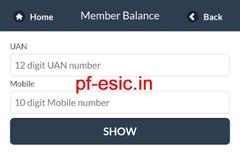 m-epf Member balance