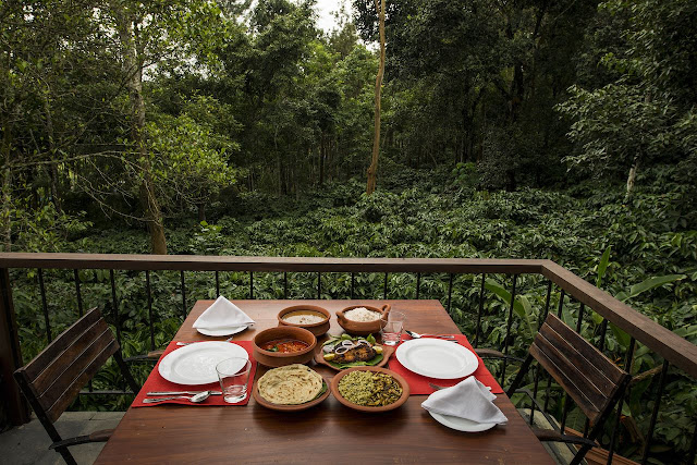 Pepper trail wayanad treehouses bes deals