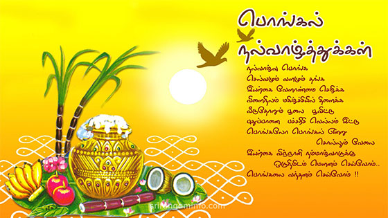 Pongal wishes greetings SMS Messages in Tamil 2017