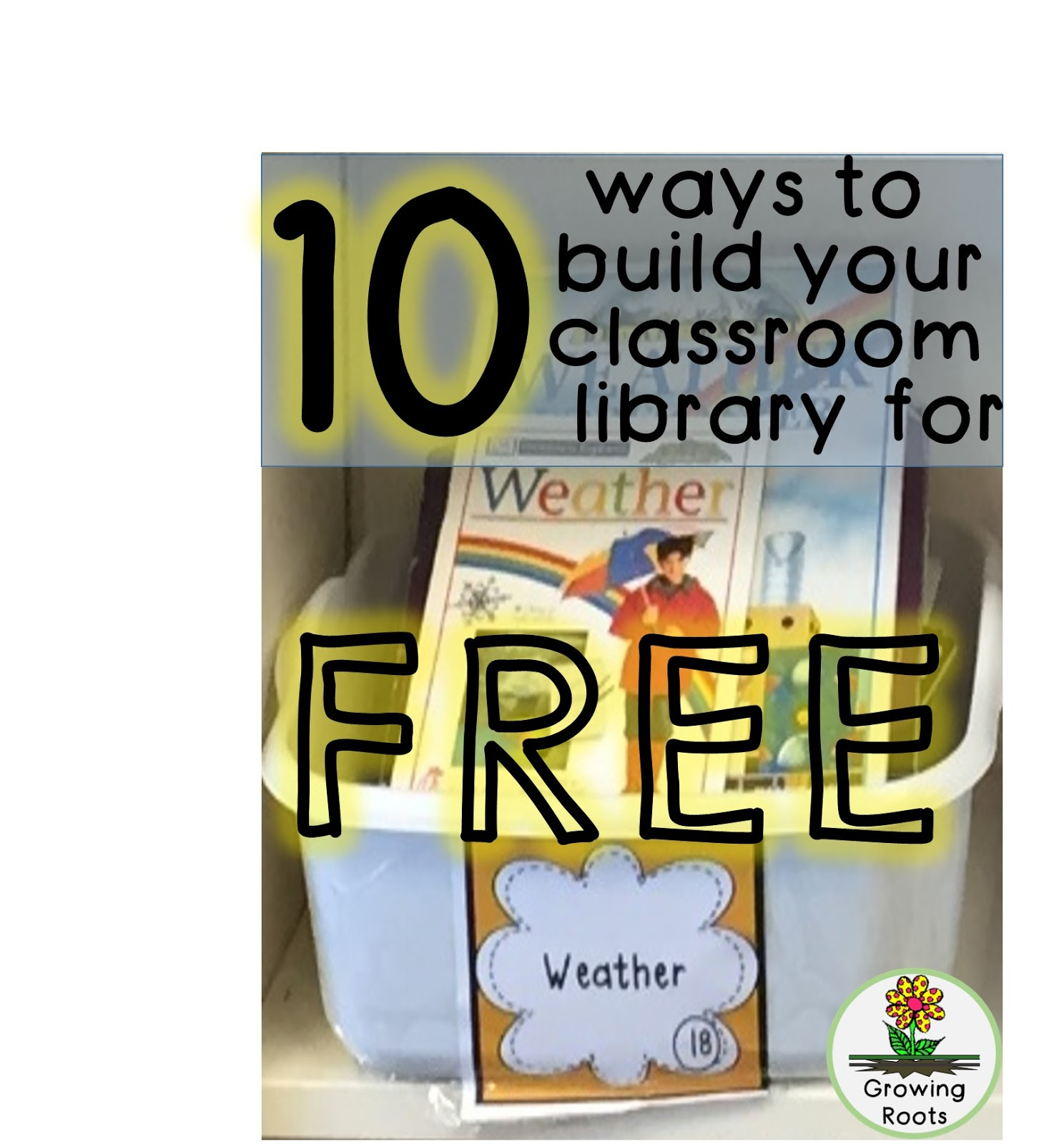 Growing Roots: Building A Classroom Library