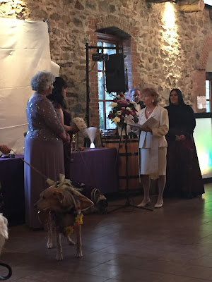 Wigglebutt's Uncorked Carol and Darlene renew vows
