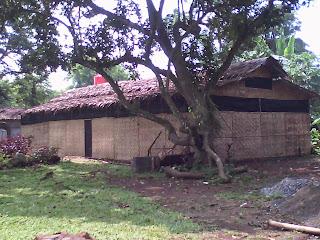 kumbung budidaya jamur bogor