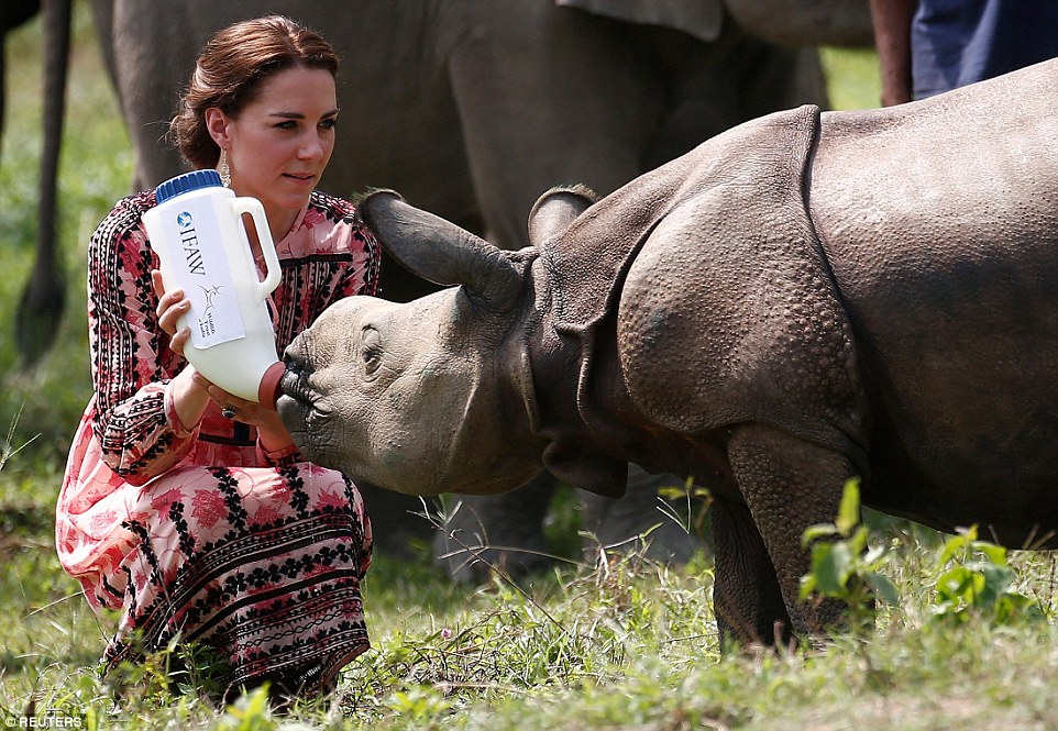 Kate Middleton enjoyed giving a bottle to a baby rhino in India
