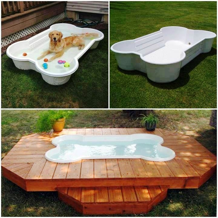 Bone Shaped Dog Pool Creative Ideas