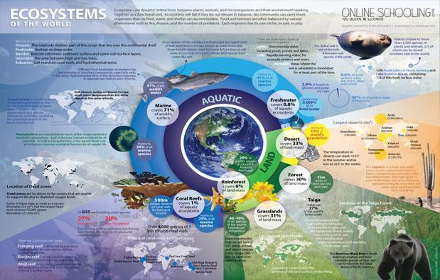 Pengertian ekosistem dan macam macam ekosistem web rumah pintar diagram lingkaran ekosistem di dunia ccuart Image collections