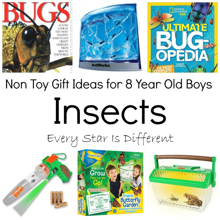 Non Toy Gift Ideas For 8 Year Old Boys Every Star Is