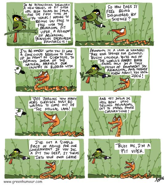 8e1bdf7ac4 Green Humour  The Arunachal Pit Viper
