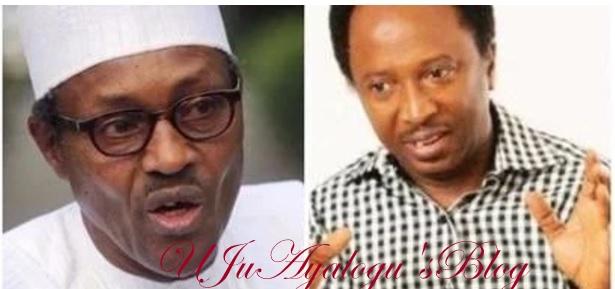 If Buhari's change fails, there will be revolution in Nigeria - APC senator declares