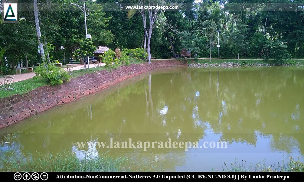 The laterite wall at the southern bank, Udugampola pond