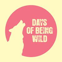 https://daysofbeingwildcorp.bandcamp.com/
