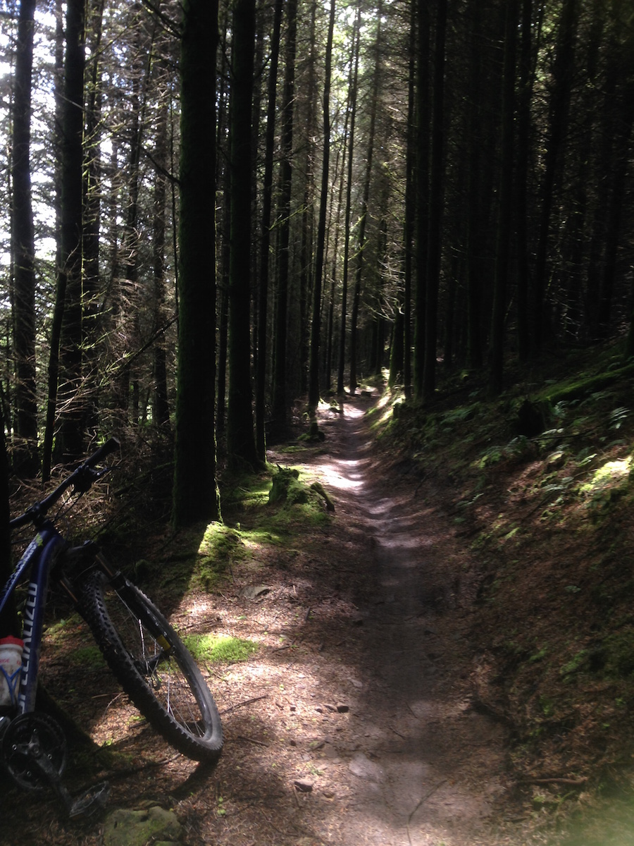 FitBits | Mountain biking in Wales | Afan Forest Park Y Wal