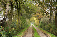 Herbstlandschaft bei Hohenaspe