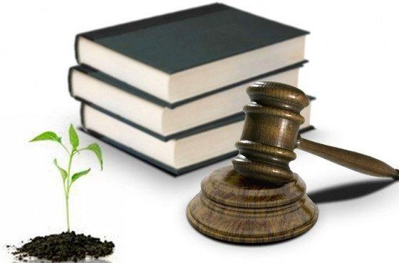 Legislación Ambiental; Qué es, objetivos, características, importancia y tratados