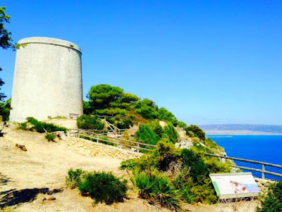 costa, cádiz, provincia, turismo, ecoturismo, naturaleza, tarifa, deporte, nebur, medioambiente