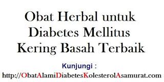 Obat Herbal untuk Diabetes Mellitus Kering Basah Terbaik