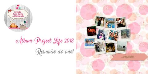 Álbum Project Life 2018