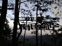 Pesona Hutan Pinus Gunungsari, Wisata Zaman Now di Kota Pati
