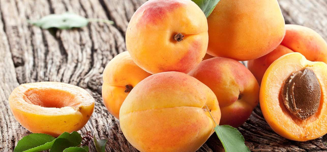 Jom ketahui magik si buah Aprikot.
