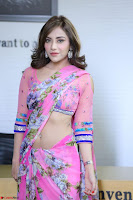 Actress Angela Krislinzki in Pink Saree Blouse Exclusive Pics March 2017 ~  081.JPG
