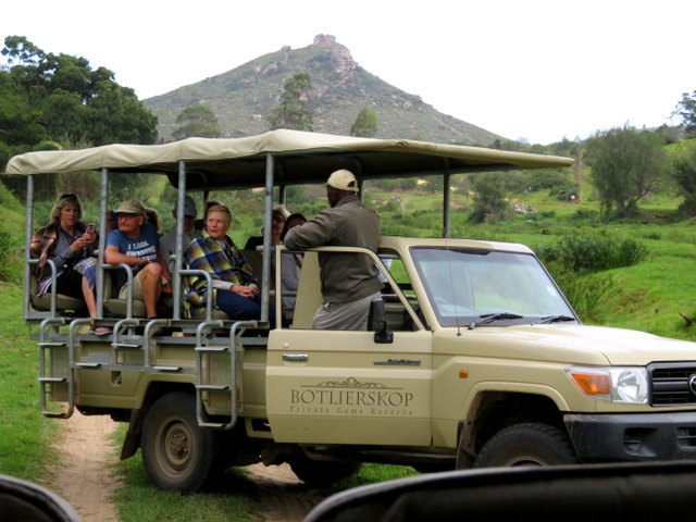 Game drive vehicle at Botlierskop