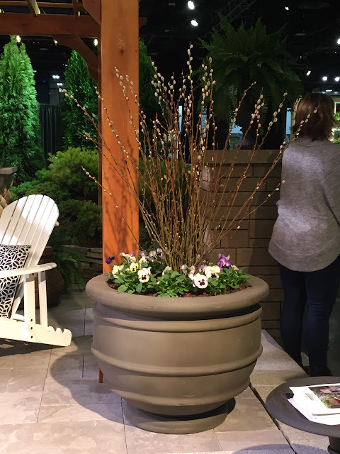 Love Oakwoods' pansy & pussy wilow planter at the 2017 Boston Flower Show