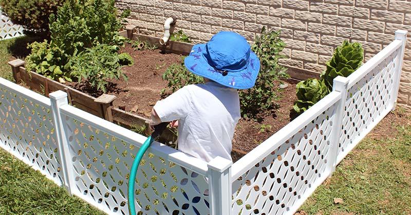 7+ Fun Garden Activities for Kids