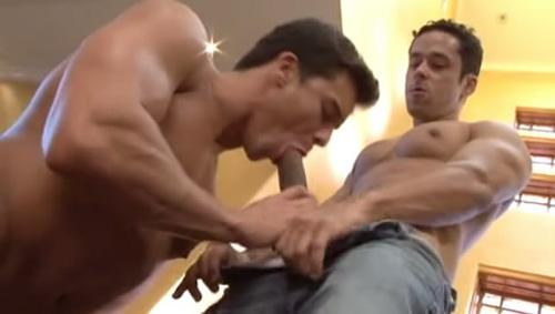 sexo Gay Big Dotados Rafael Alencar