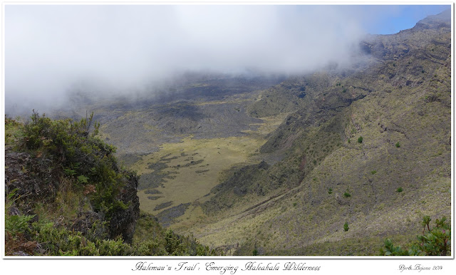 Halemau'u Trail: Emerging Haleakala Wilderness