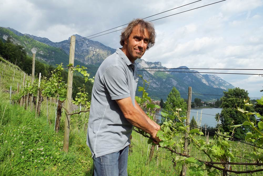 Biowinzer des Jahres Marco Casanova: «Jeden Jahrgang gibt es neu zu entdecken»
