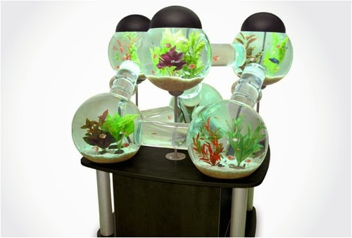 03-Labyrinth-Maze-Aquarium-Fish-Tank-Opulentitems-www-designstack-co