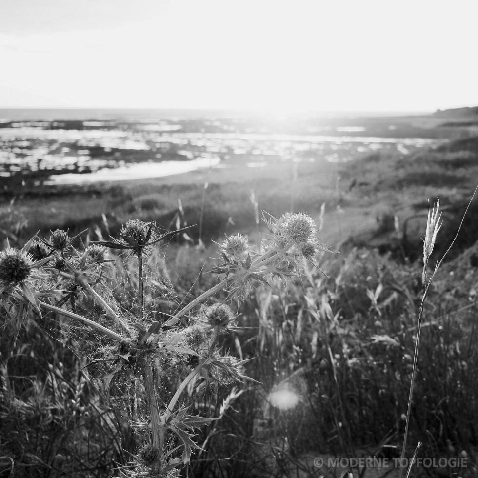Sonnenuntergang auf der Ile d'Oleron - franzoesische Atlantikkueste