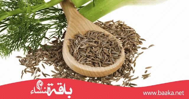 فوائد الشمر (البسباس) للبشرة والشعر والصحة