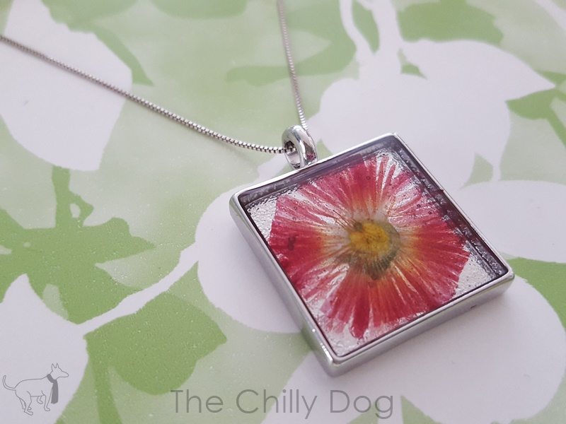 Tutorial pressed flower pendant the chilly dog tutorial pressed flower pendant aloadofball Choice Image