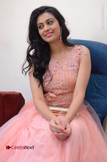 Actress Neha Hinge Stills in Pink Long Dress at Srivalli Teaser Launch  0068.JPG