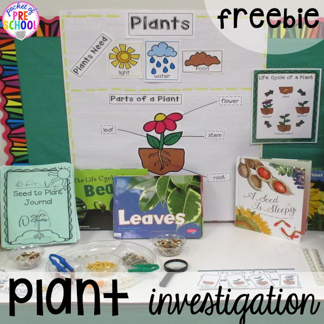 spring activities and centers for preschool prek and
