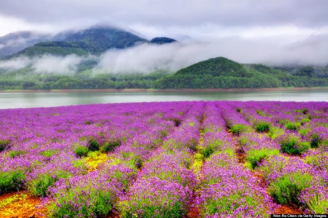 ve may bay di nhat ban - Hokkaido