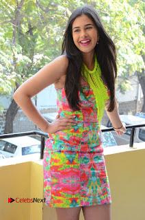 Telugu Actress Prasanna Stills in Short Dress at Inkenti Nuvve Cheppu Press Meet Stills  0049.JPG