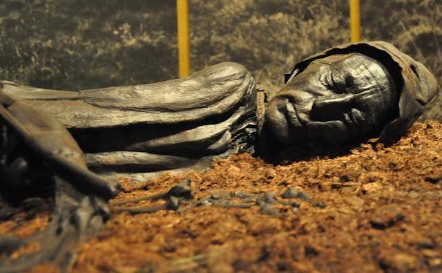 Tollundmanden - człowiek z Tollund - mumia z duńskiego bagna z epoki żelaza