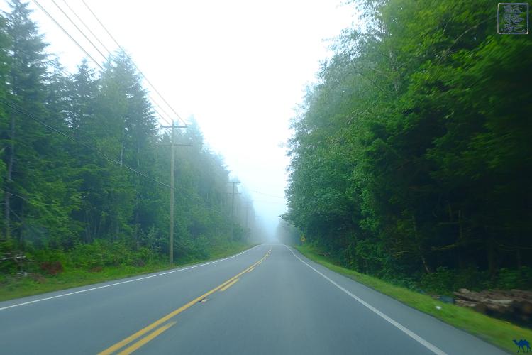 Le Chameau Bleu - Blog Voyage Canada - Route de Colombie britannique - Canada